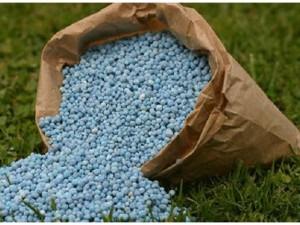 Plant Fertilization