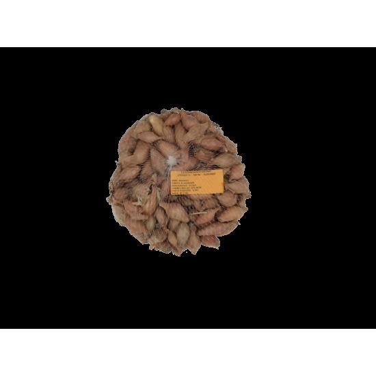 ΚΟΚΚΑΡΙ  (500 ΓΡ)