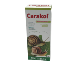 CARACOL (1 ΚΙΛΟ)