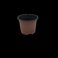 ΓΛΑΣΤΡΑΚΙ ΦΥΤΩΡΙΟΥ (9cm)